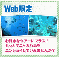 WEB Special Add any tour with Diving or Seawalker.