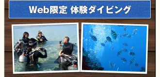 WEB Special Diving